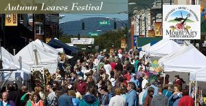 _uploadimages_weblinks_1248276_gallery_postcardautumnleavesfestival